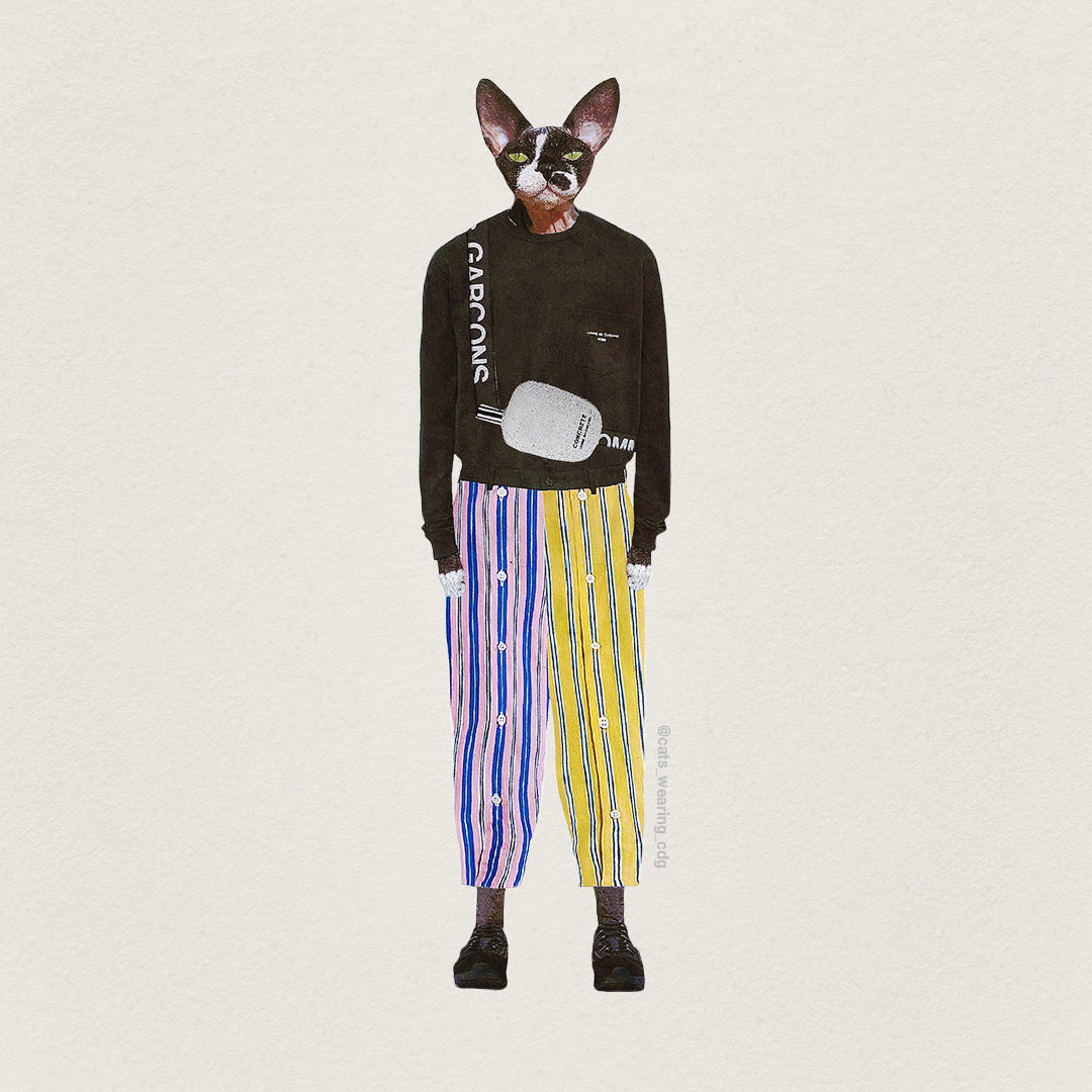 The unorthodox digital fashion archive that dresses cats in CDG